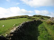 Southern rampart section of Wind Hill from the east, 2009  © Exmoor National Park Authority