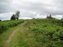 Western rampart of Grabbist Hillfort from the west, 2009  © Exmoor National Park Authority