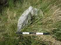 Stone 1 from the east, 2009  © Exmoor National Park Authority