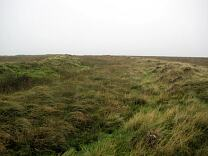 Northern rampart of Shoulsbury Castle from east, 2009  © Exmoor National Park Authority