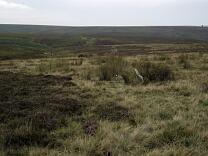 Porlock Stone Circle photographic survey 2013  © Exmoor National Park Authority