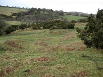 Sweetworthy Deserted Medieval Settlement. 2009  © Exmoor National Park Authority