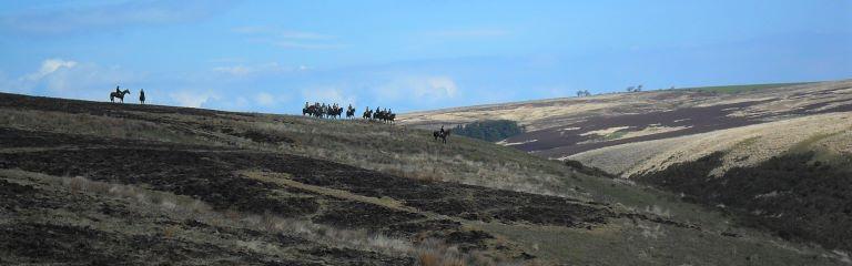 Image of the hunt at Lanacombe; © ENPA 2012