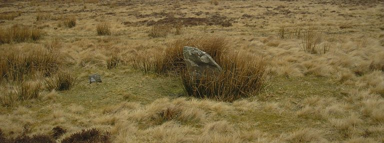 Single stone at Porlock Common Stone Circle (© ENPA 2013)