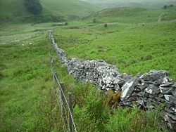 Section of Royal Forest Boundary wall (Peter Bonvoisin 2012)